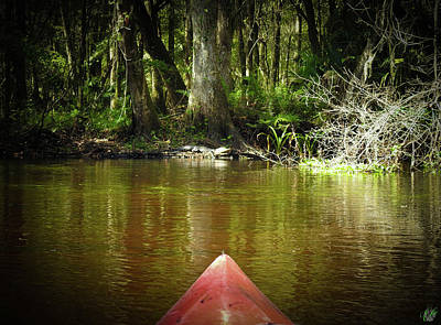 Photograph - Scenes From A Kayak, No. 14 by Elie Wolf