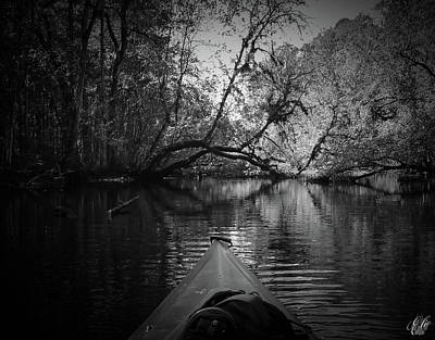 Photograph - Scenes From A Kayak, No. 8 by Elie Wolf