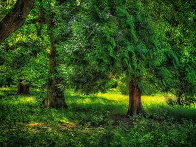 Digital Art - Scenes From An English Garden by Leigh Kemp