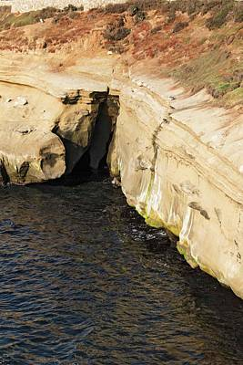 Photograph - Scenes From Shell Beach In La Jolla - 3 by Hany J