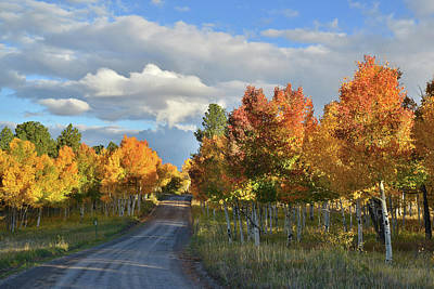 Photograph - Scenic Backways Of Colorado by Ray Mathis