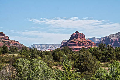 Photograph - Scenic Bell Rock by Ruth Jolly