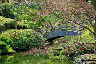 Photograph - Scenic Bridge by Inspirational Photo Creations Audrey Taylor