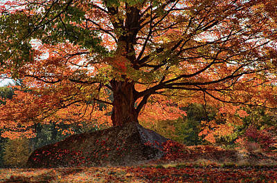 Photograph - Scenic Byway In Peabody Ma by Jeff Folger
