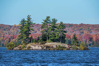 Art Print featuring the photograph Scenic Fall View by Paul Freidlund