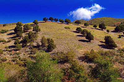 Photograph - Scenic Hill Of Utah by Tikvah's Hope