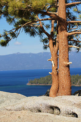 Photograph - Scenic Lake Tahoe by Lori Mellen-Pagliaro