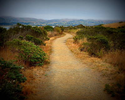 Photograph - Scenic Path On Bodega Head by Carla Parris