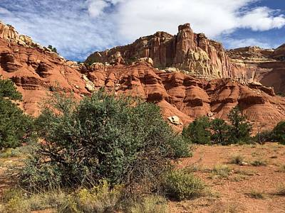 Photograph - Scenic Trail Capitol Reef by Anne Sands