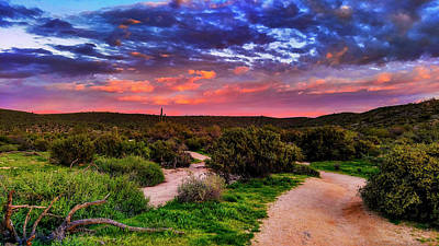 Photograph - Scenic Trailhead by Anthony Citro