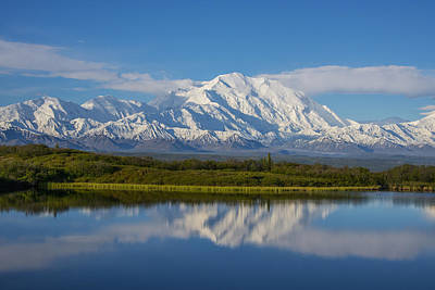 Scenic View Of Mt. Mckinley Reflecting Art Print by Cathy Hart