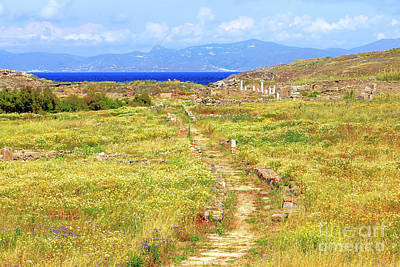 Photograph - Scenic View On The Island Of Delos by John Rizzuto
