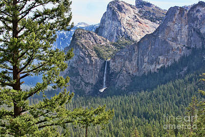 Photograph - Scenic View Yosemite National Park  by Chuck Kuhn