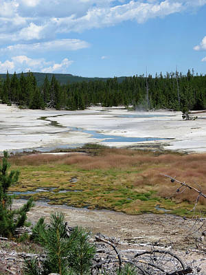 Photograph - Scenic Yellowstone by Laurel Powell