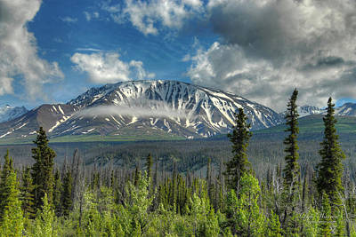 Photograph - Scenic Yukon by Dyle   Warren
