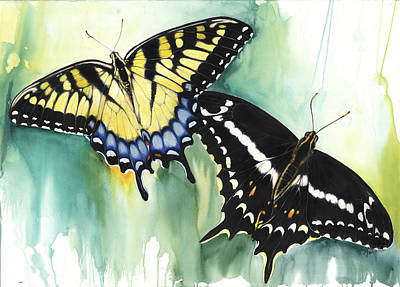 Mixed Media - Schaus Swallowtail Butterfly  by Anthony Burks Sr