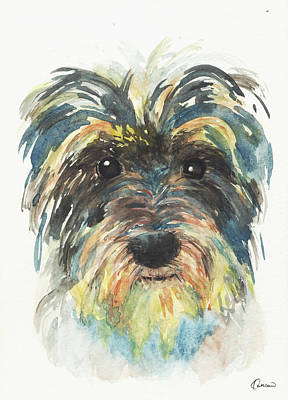 Watercolor Pet Portraits Wall Art - Painting - Crazy Schnauzer by Kathleen Wong