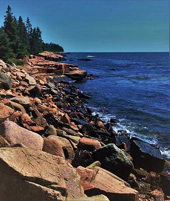 Photograph - Schoodic by Lisa Dunn