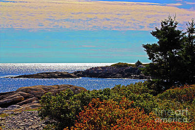 Photograph - Schoodic Peninsula October by Patti Whitten