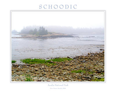 Schoodic Art Print by Peter Muzyka