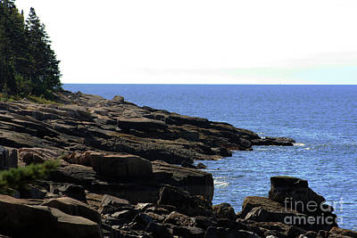 Photograph - Schoodic Point by Patti Whitten