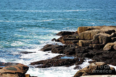 Photograph - Schoodic Rocky Coast by Patti Whitten