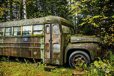 Photograph - School Bus Camp by Alana Ranney