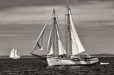 Photograph - Schooner American Eagle 2012 by Fred LeBlanc