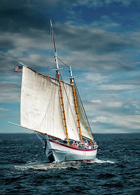 Photograph - Schooner Ardelle by Fred LeBlanc