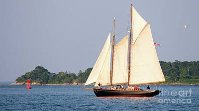 Schooner Cruise, Casco Bay, South Portland, Maine  -86696 Art Print