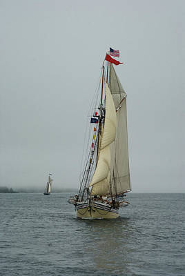 Photograph - Schooner Days by Darylann Leonard Photography