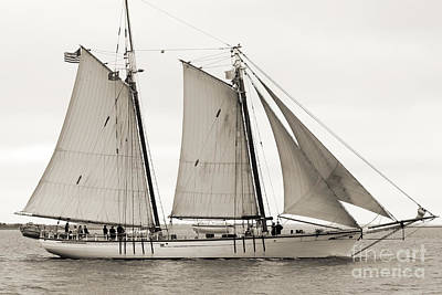 Sepia Photograph - Schooner Harvey Gamage Of Islesboro Maine by Dustin K Ryan