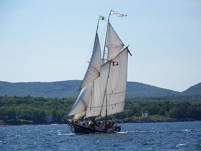 Schooner Lewis R French Sailing Along Original by Joseph Rennie