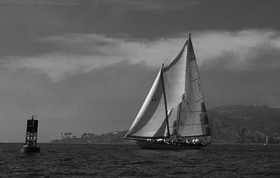 Photograph - Schooner Off Point Loma by David Shuler