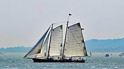 Photograph - Schooner On New York Harbor No. 3 by Sandy Taylor