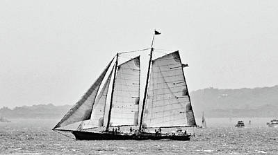 Photograph - Schooner On New York Harbor No. 3-1 by Sandy Taylor
