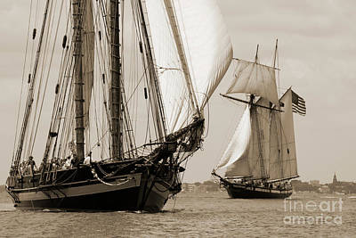 Lynxes Photograph - Schooner Pride Of Baltimore And Lynx by Dustin K Ryan