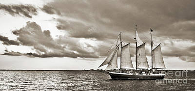 Historic Schooner Photograph - Schooner Pride Tallship Charleston Sc by Dustin K Ryan