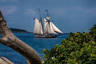 Schooner Sailing Out Of The Harbor Art Print by Jeff Folger