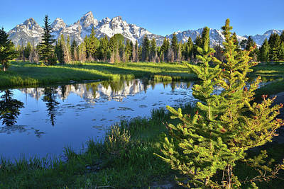 Photograph - Schwabacher Landing Mirror Image by Ray Mathis