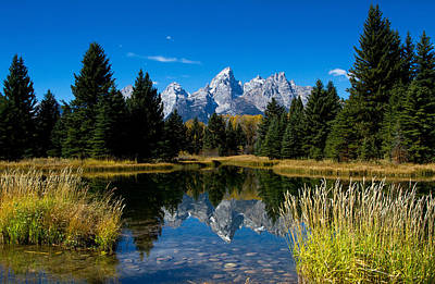 Photograph - Schwabacher Landing Reflection by Shari Sommerfeld