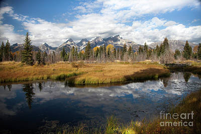 Photograph - Schwabachers Landing, Grand Teton National Park Wyoming by Greg Kopriva