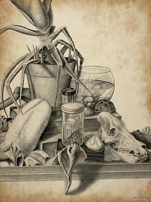 Still Life Drawings - Science Class Still Life by Joseph Kemeny