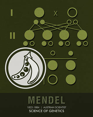 Mixed Media - Science Posters - Gregor Mendel - Geneticist, Scientist by Studio Grafiikka