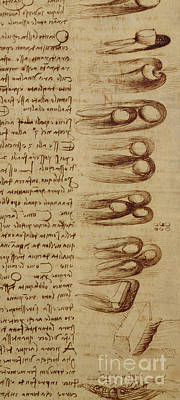 Mirror Drawing - Scientific Diagrams by Leonardo Da Vinci