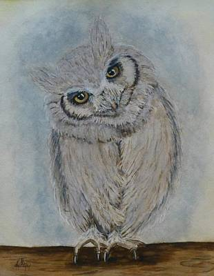 Painting - Scops Owl by Kelly Mills