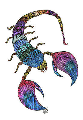Drawing - Scorpio by Barbara McConoughey