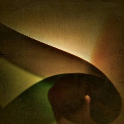 Photograph - Scorpio Illuminations by Joan Reese