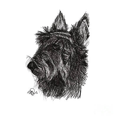 Scottish Dog Drawing - Scott T. Boy. by M Neils