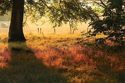 Photograph - Scottish Farm by Jim Cotton